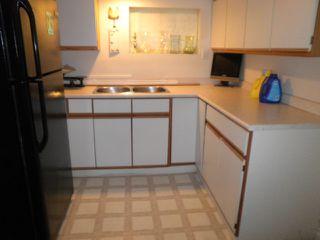 Photo 17: 25085 124 Avenue in Maple Ridge: Websters Corners House for sale : MLS®# R2005352