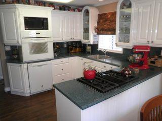Photo 7: 25085 124 Avenue in Maple Ridge: Websters Corners House for sale : MLS®# R2005352