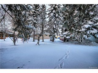 Photo 20: 116 Second Avenue Southwest in St Jean Baptiste: R17 Residential for sale : MLS®# 1630644
