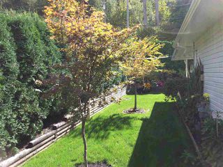 Photo 19: 21070 LAKEVIEW Crescent in Hope: Hope Kawkawa Lake House for sale : MLS®# R2138972