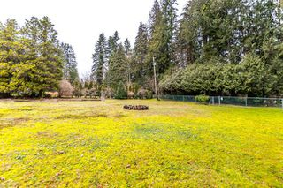 "Photo 13: 557 HADDEN Drive in West Vancouver: British Properties House for sale in ""British Properties"" : MLS®# R2140213"
