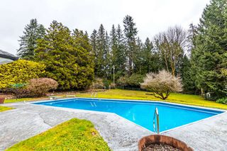"Photo 1: 557 HADDEN Drive in West Vancouver: British Properties House for sale in ""British Properties"" : MLS®# R2140213"
