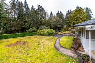 "Photo 8: 557 HADDEN Drive in West Vancouver: British Properties House for sale in ""British Properties"" : MLS®# R2140213"