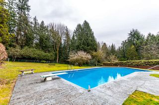 "Photo 9: 557 HADDEN Drive in West Vancouver: British Properties House for sale in ""British Properties"" : MLS®# R2140213"