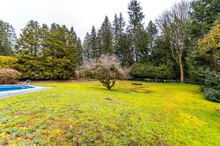 "Photo 11: 557 HADDEN Drive in West Vancouver: British Properties House for sale in ""British Properties"" : MLS®# R2140213"