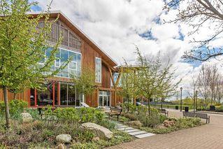 Photo 20: 305 11950 HARRIS Road in Pitt Meadows: Central Meadows Condo for sale : MLS®# R2158872