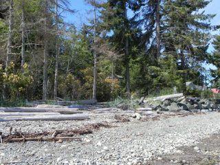 Photo 10: LT 2 SEAVIEW ROAD in COURTENAY: CV Merville Black Creek Land for sale (Comox Valley)  : MLS®# 765913