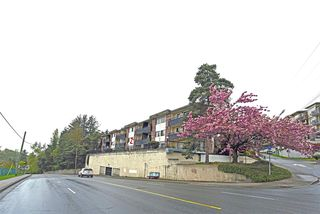 "Photo 2: 210 2551 WILLOW Lane in Abbotsford: Central Abbotsford Condo for sale in ""Valley View Manor"" : MLS®# R2204247"