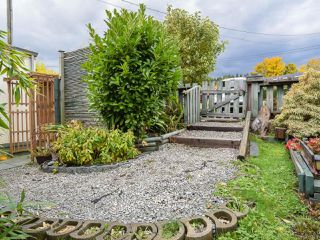 Photo 21: 5580 Horne St in UNION BAY: CV Union Bay/Fanny Bay Manufactured Home for sale (Comox Valley)  : MLS®# 774407