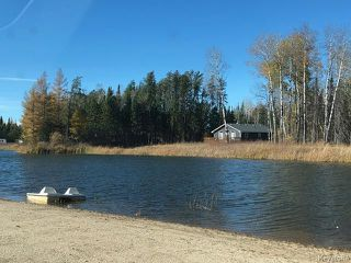 Photo 4: 93 Falcon West Estates in Falcon Lake: R18 Residential for sale : MLS®# 1818045