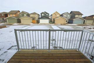 Photo 29: 22332 80 Avenue in Edmonton: Zone 58 House for sale : MLS®# E4132304