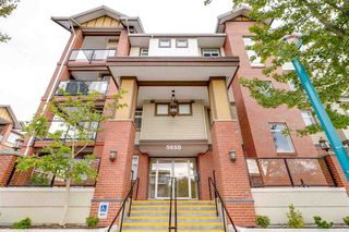 Main Photo: 223 5650 201A Street in Langley: Langley City Condo for sale : MLS®# R2320707