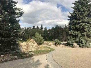 Photo 6: 541 107 Street in Edmonton: Zone 55 Vacant Lot for sale : MLS®# E4138332
