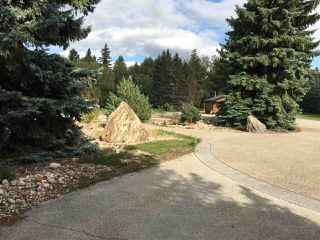 Photo 16: 541 107 Street in Edmonton: Zone 55 Vacant Lot for sale : MLS®# E4138332