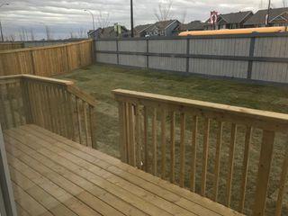 Photo 29: 9041 24 Avenue in Edmonton: Zone 53 House for sale : MLS®# E4140270