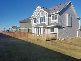 Photo 30: 9041 24 Avenue in Edmonton: Zone 53 House for sale : MLS®# E4140270
