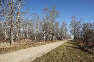 Photo 5: 255065 Twp 473: Rural Wetaskiwin County House for sale : MLS®# E4141100