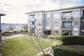 Photo 8: 320 12339 STEVESTON Highway in Richmond: Ironwood Condo for sale : MLS®# R2352496