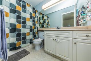 Photo 17: 24290 102A Avenue in Maple Ridge: Albion House for sale : MLS®# R2376243