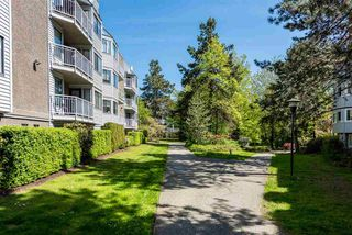 """Photo 3: 211 9584 MANCHESTER Drive in Burnaby: Cariboo Condo for sale in """"Brookside Park"""" (Burnaby North)  : MLS®# R2385602"""