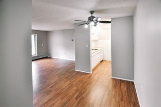 Photo 3: 304 10636 120 Street in Edmonton: Zone 08 Condo for sale : MLS®# E4176689