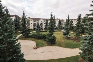 Photo 12: 304 10636 120 Street in Edmonton: Zone 08 Condo for sale : MLS®# E4176689