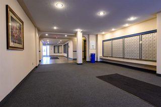 Photo 2: 406 11325 83 Street in Edmonton: Zone 05 Condo for sale : MLS®# E4180607