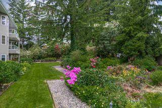 """Photo 16: 107 2020 CEDAR VILLAGE Crescent in North Vancouver: Westlynn Condo for sale in """"Kirkstone Gardens"""" : MLS®# R2429464"""
