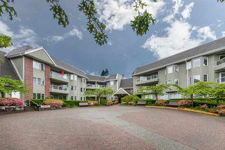 """Photo 1: 107 2020 CEDAR VILLAGE Crescent in North Vancouver: Westlynn Condo for sale in """"Kirkstone Gardens"""" : MLS®# R2429464"""