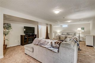 Photo 27: 10219 MAPLE BROOK Place SE in Calgary: Maple Ridge Detached for sale : MLS®# C4304932