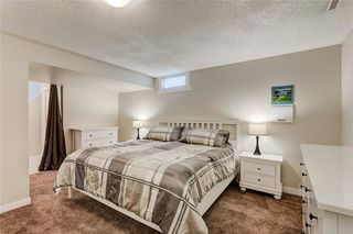 Photo 29: 10219 MAPLE BROOK Place SE in Calgary: Maple Ridge Detached for sale : MLS®# C4304932