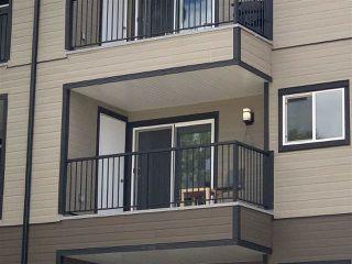 Photo 3: 303 4011 26 AV in Edmonton: Zone 29 Condo for sale : MLS®# E4208692