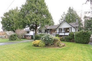 "Photo 3: 856 51A Street in Tsawwassen: Tsawwassen Central House for sale in ""CLIFF DRIVE"" : MLS®# V879158"