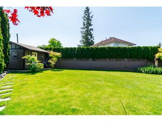 """Photo 18: 9734 206TH Street in Langley: Walnut Grove House for sale in """"Derby Hills"""" : MLS®# F1441883"""