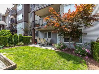 """Photo 16: 116 2581 LANGDON Street in Abbotsford: Abbotsford West Condo for sale in """"Cobblestone"""" : MLS®# R2074947"""