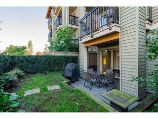 """Photo 18: 117 21009 56 Avenue in Langley: Salmon River Condo for sale in """"Cornerstone"""" : MLS®# R2111259"""
