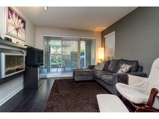"""Photo 3: 117 21009 56 Avenue in Langley: Salmon River Condo for sale in """"Cornerstone"""" : MLS®# R2111259"""
