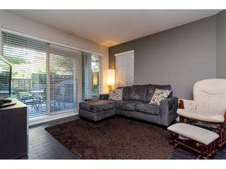"""Photo 4: 117 21009 56 Avenue in Langley: Salmon River Condo for sale in """"Cornerstone"""" : MLS®# R2111259"""