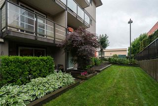 "Photo 17: 115 30515 CARDINAL Avenue in Abbotsford: Abbotsford West Condo for sale in ""Tamarind Westside"" : MLS®# R2175307"