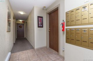 Photo 3: 103 2427 Amherst Avenue in SIDNEY: Si Sidney North-East Condo Apartment for sale (Sidney)  : MLS®# 386456
