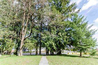 Photo 3: 9017 156 Street in Surrey: Fleetwood Tynehead House for sale : MLS®# R2252391