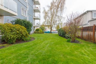 Photo 20: 204 2360 James White Blvd in SIDNEY: Si Sidney North-East Condo Apartment for sale (Sidney)  : MLS®# 783227