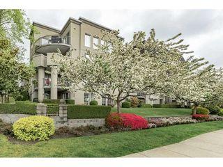 "Photo 1: 409 1669 GRANT Avenue in Port Coquitlam: Glenwood PQ Condo for sale in ""THE CHARLESTON"" : MLS®# R2270844"