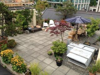"Photo 19: 5-4 550 BEATTY Street in Vancouver: Downtown VW Condo for sale in ""Downtown VW"" (Vancouver West)  : MLS®# R2279256"