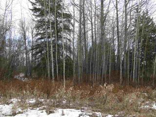 Main Photo: 4418 Hwy. 633: Rural Lac Ste. Anne County Rural Land/Vacant Lot for sale : MLS®# E4135891