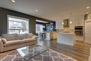 Photo 23: 381 KINGS HEIGHTS Drive SE: Airdrie Detached for sale : MLS®# C4256359