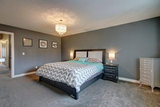 Photo 30: 381 KINGS HEIGHTS Drive SE: Airdrie Detached for sale : MLS®# C4256359