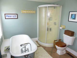 Photo 25: 10 Charlotte Lane in Shelburne: 407-Shelburne County Residential for sale (South Shore)  : MLS®# 201918725