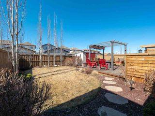 Photo 39: 16904 57 Street in Edmonton: Zone 03 House for sale : MLS®# E4197897