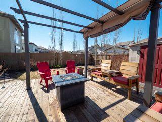 Photo 42: 16904 57 Street in Edmonton: Zone 03 House for sale : MLS®# E4197897